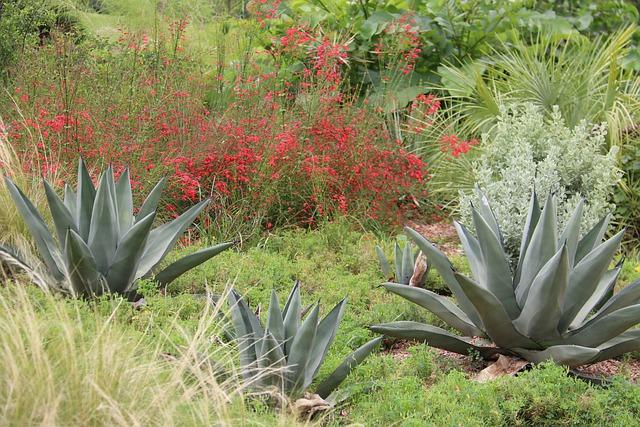 Jardín sostenible.Viveros González. com