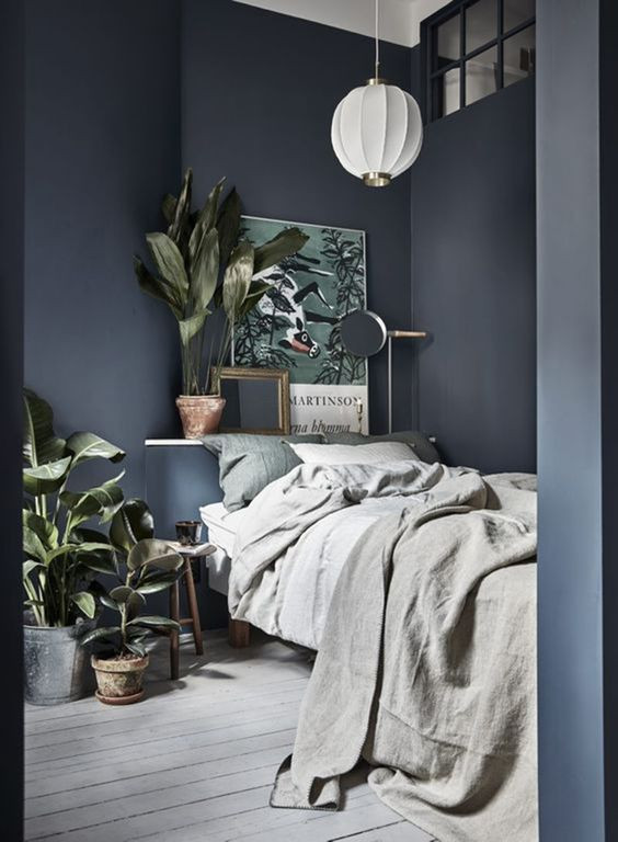 pinterest-plants for bedrooms